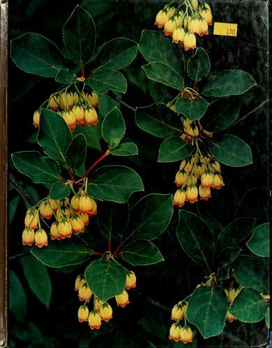 Download Flowering shrubs