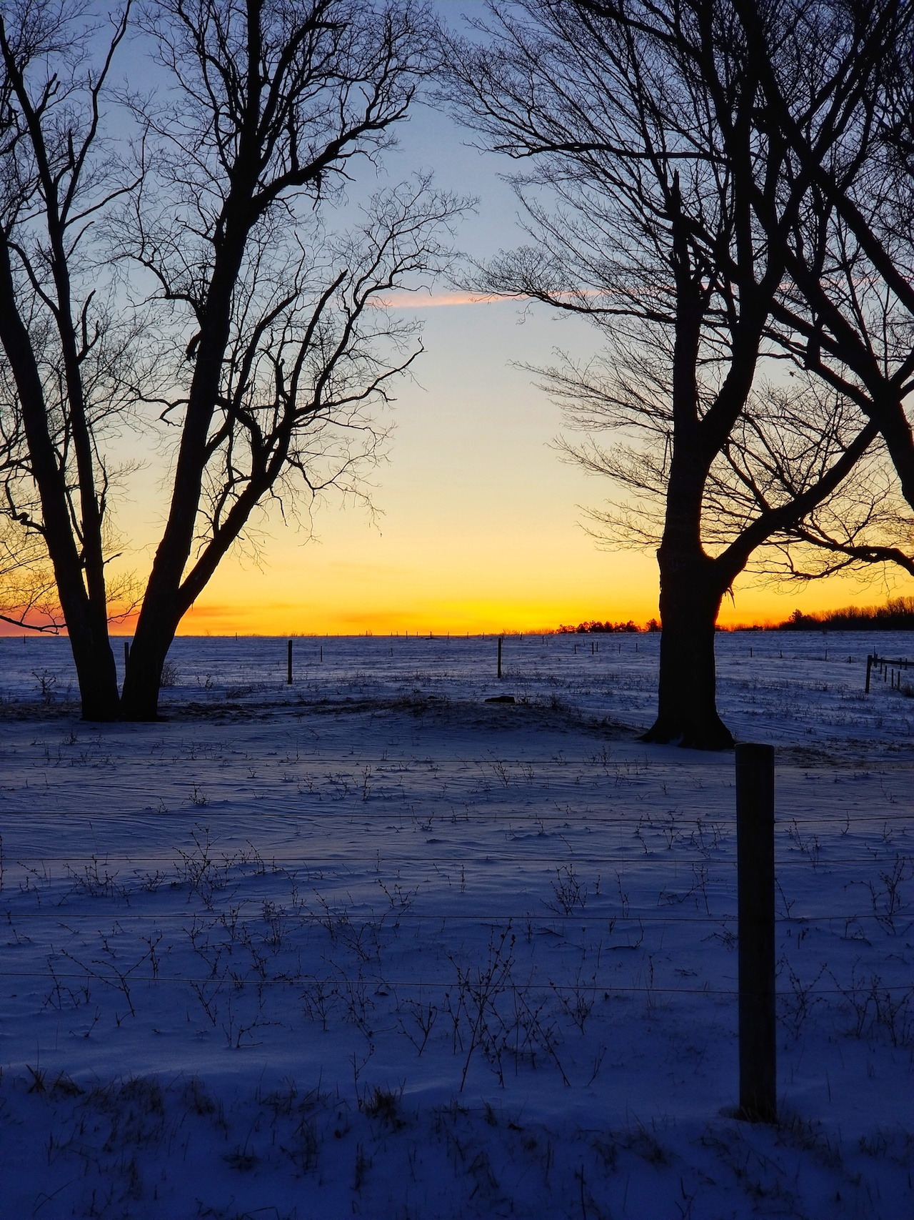 Sunset field in Yates County (photo)