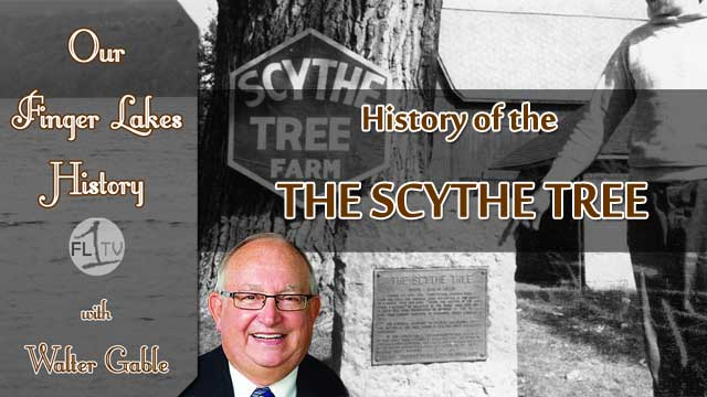 OUR FINGER LAKES HISTORY: The Scythe Tree in Waterloo (podcast)