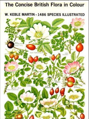 The concise British flora in colour by W. Keble Martin